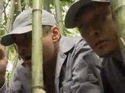 2ทหารสุดโฉด จับสาวชาวนาข่มขืนกลางป่า ซาดิสสุดๆๆ หนังโป๊Asia Porn
