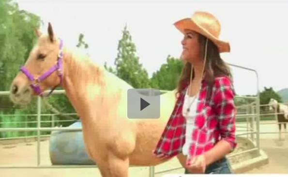 สาวฝรั่งมาเรียนขี่ม้ากับเจอครูฝรั่งของม้า XXX พาขวบสอนไม่ยอมให้หยุด